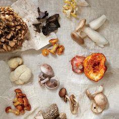 12 Delicious Exotic Mushroom Varieties | CookingLight.com