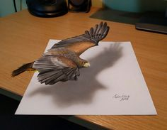 3D Drawings That I Create To Confuse People (Part 3)