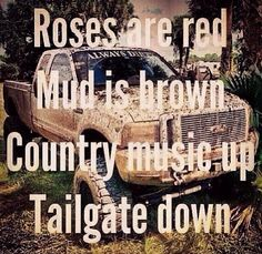 Just because I'm all punk rock on the outside doesn't mean I dont love country music mud lifted trucks and riding horses.