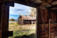 In a SHTF situation, you will need these 4 factors to take you from surviving to thriving in a homestead. Are you ready?