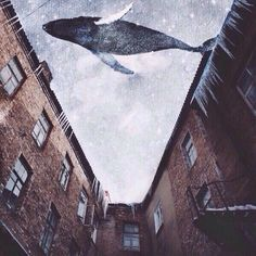 Whale and city Space Whale, Save The Whales, Whale Art, Blue Whale, Humpback Whale, Life Is Strange, Surreal Art, Collage Art, Fantasy Art