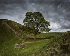 Hadrian's Wall, Sycamore Gap | by malcolmacooper