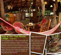 Tree house lodge, Costa Rica. Honeymoon?
