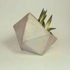 #concrete #concretethings #diy #handmade #kaktus #succulent #cactus #кактус #суккулент #своимируками #вазаизбетона #бетон #цемент #горшкиизбетона #мебель #мебельизбетона #садоваямебель #интерьер #interiors  #дизайн #лофт #loft #designer  Не знаете, чем разнообразить интерьер своего ресторана? У вас бетонные полы и графитовые стены?  Вам точно не хватает мебели и аксессуаров из бетона!  А мы даже знаем, к кому вам нужно обратиться  ***  Welcome to the direct!