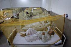 17 more dengue cases report in Rawalpindi