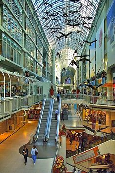 Shopping at The Eaton Centre - Things to Do in Toronto, Ontario, Canada Oh The Places You'll Go, Places To Travel, Places To Visit, Toronto Travel, Toronto Shopping, Toronto City, Canada Shopping, Downtown Toronto, Shopping Malls
