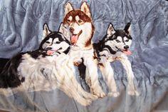 Sivá deka s motívom husky Husky, Dogs, Animals, Animales, Animaux, Pet Dogs, Doggies, Animal, Animais