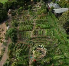 One-acre garden Edible Schoolyard in Berkeley, California. The garden replaced an old parking lot. The first step was to plant a cover crop to improve soil quality. Now there are chicken coops, and a compost heap, and science class under a vine-covered pergola. Image by Michael Layefsky.