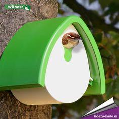 Vogelhuisje Faba