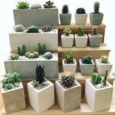 53 The Best Cinder Block Garden Design Ideas In Your Front Yard - Garten Ideen Concrete Pots, Concrete Planters, Diy Planters, Garden Planters, Succulents Garden, Mini Cactus Garden, Stone Planters, Concrete Furniture, Planter Ideas