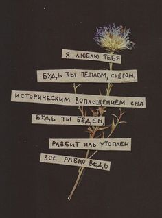Russian Quotes, Some Quotes, Quote Aesthetic, My Mood, Some Words, Love Letters, In My Feelings, Journal Inspiration, Quotations