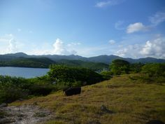 Grenada , Touched Reality, real estate