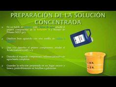 (3) CURSO: CULTIVO HIDROPÓNICO DE LECHUGA, SISTEMA DE RAÍZ FLOTANTE. - YouTube