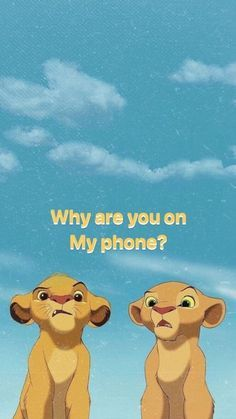 Funny Lockscreen, Disney Phone Wallpaper, Cartoon Wallpaper Iphone, Animal Wallpaper, Cute Cartoon Wallpapers, Wallpaper Quotes, Wallpaper Spongebob, Wallpaper Ideas, Wall Wallpaper
