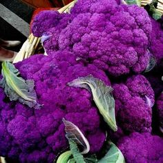 Purple Cauliflower ♥ beautiful, healthy & delicious! ♥ bake it, roast it, toss it in a stir fry, use it in a vegan soup or stew, or enjoy it raw in a nice big salad... the variations are limitless! ♥ plant strong for the win! ♥