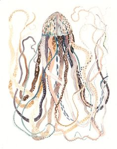 Antique Jellyfish Archival Print by unitedthread on Etsy, $20.00