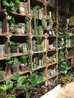 16 gorgeous interior design with indoor plants 00006 Indoor Garden, Indoor Plants, Flower Shop Interiors, Deco Jungle, Flower Shop Design, Decoration Plante, Interior Plants, Interior Design, Garden Shop