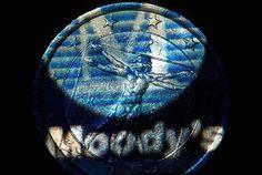 Moody's Euro