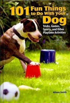 101 fun things to do with your dogs! #DogTrain #TeachDogs #TrainDogs #Dogs #DogTricks #Pets Dog Tricks, Dog Love, Puppy Love, Game Mode, Education Canine, Basic Dog Training, Cesar Millan, Dog Games, Dog Activities