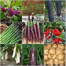 Heirloom Garden vegetable seeds Non-GMO organic Tomato tree Purple Carrots