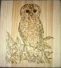 owl Wood Crafts, Owl, Owls, Woodworking Crafts, Wood Creations