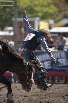 Join the Washington State Fair in welcoming the top cowboys and cowgirls in the country as they compete in the Justin Boots Rodeo Playoffs, September 6 - 8 #FearlessExploration