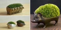 Japanese Moss Planters- Creative Flower Planters via Bored Panda