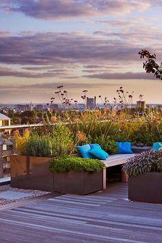 Large Roof Garden | Sunset over herb garden on 7th floor | Charlotte Rowe Garden Design