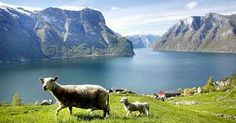 Bilder fra Norge.