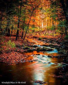 Kooser State Park, Pennsylvania