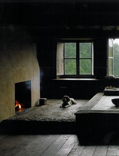 I quite like the simplicity of the fireplace and really love the windows...