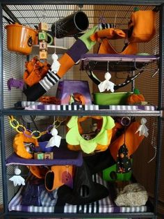 Decorate Your Rat Cage for Halloween