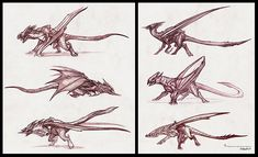 Sucker Punch Concept Art by Jerad S. Animal Sketches, Drawing Sketches, Drawings, Character Inspiration, Character Design, Concept Art World, Sucker Punch, Dragon Pictures, Dragon Design