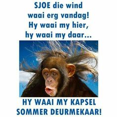 Goeie More, Afrikaans Quotes, Weather Seasons, Good Morning, Friendship, Lol, Canvas, Words, Cute