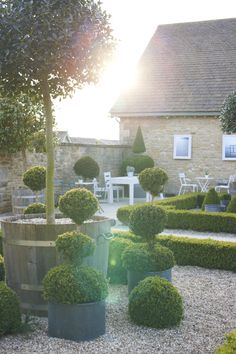 Our walled courtyard at the farm