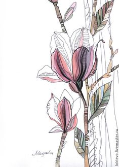 Botanical Drawings, Botanical Art, Botanical Illustration, Illustration Art, Art Watercolor, Watercolor Flowers, Art Sketches, Art Drawings, Flowers Wallpaper