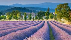 An unforgettable week cruising in Provence