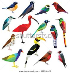 Birds set colorful low poly design isolated on white background. Torn Paper, Colorful Birds, Low Poly, Wildlife, Clip Art, Illustration, Nature, Animals, Inspiration