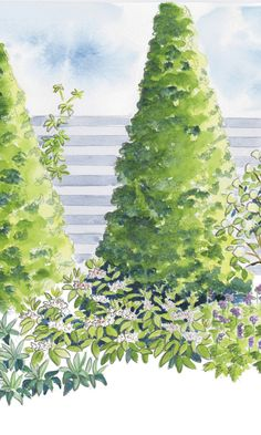 Istutussuunnitelma: näkymän peittävä kasviryhmä | Meillä kotona Welcome Spring, Garden Planning, Cactus Plants, Dreaming Of You, Home And Garden, Make It Yourself, Gardening, Dreams, House