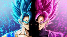 Vegito and Black Goku