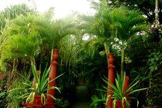 Landscaping, Villa Las Caletas, Jaco, Costa Rica 2005 (this spa resort is close to Mantas Beach and Herradura Beach)