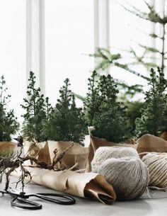 A complete guide on how to have your own Scandinavian Christmas, with beautiful inspiration, great tips and amazing DIY's. A minimalist Christmas decor, guide to Scandinavian Christmas design, Scandinavian DIYs Natural Christmas, Mini Christmas Tree, Nordic Christmas, Christmas Design, Rustic Christmas, Winter Christmas, Christmas Cactus, Christmas Island, Beautiful Christmas