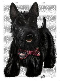 would look good with my dachshund print Baby Dogs, Dogs And Puppies, Corgi Puppies, I Love Dogs, Cute Dogs, Book Page Art, Dog Bows, Westies, Animal Paintings