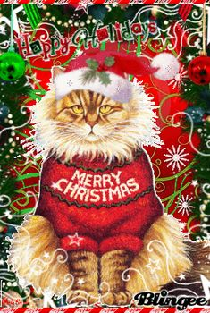 (+Have+a+purfect+christmas+~+Meow+^-^+)