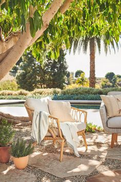 The Lucara Chair's plush ivory cushions are weather-resistant and ready to receive your guests for long evenings under the string lights. #OutdoorFurniture #OutdoorSofa #PatioFurniture #OutdoorStyle
