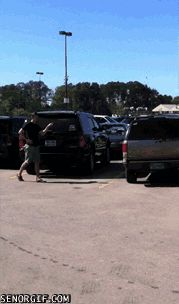 WTF is Happening in This Parking Lot GIF - WTF is Happening in this Parking Lot