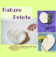 Nature prints clay craft from P is for Preschooler