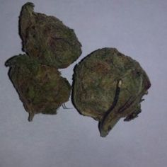 They're usually made with Girl Scout Cookies (the weed strain, not Thin Mints) flower and concentrate, but can be made with any strain Marijuana Plants, Cannabis Plant, Weed Buds, Autoflowering Seeds, Cannabis Seeds For Sale, Weed Types, Weed Edibles, Farm Online, Pat Cash
