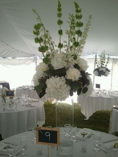 Brittany Tent Floral