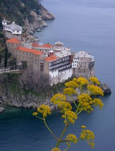 Gregoriou...Mount Athos (Agion Oros), Greece An Orthodox spiritual centre since 1054, Mount Athos has enjoyed an autonomous statute since Byzantine times. The 'Holy Mountain', which is forbidden to women and children, is also a recognized artistic site. The layout of the monasteries (about 20 of which are presently inhabited by some 1,400 monks) had an influence as far afield as Russia, and its school of painting influenced the history of Orthodox art_ http://whc.unesco.org/en/list/454
